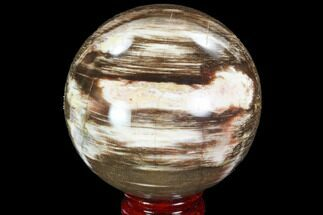 "3.65"" Petrified Wood Sphere - Madagascar For Sale, #98462"