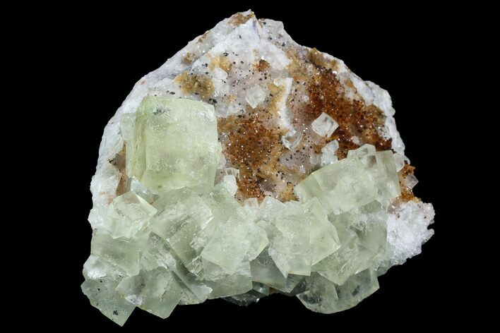"3.6"" Lime-Green, Cubic Fluorite Crystal Cluster - Morocco"
