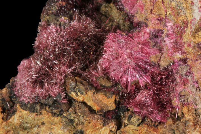 "2.1"" Fibrous Roselite Crystals on Matrix - Morocco"