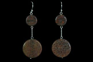 Buy Polished Fossil Dinosaur Bone (Gembone) Earrings - #93412