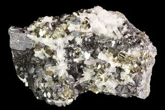 Pyrite, Sphalerite, Galena & Quartz - Fossils For Sale - #99696