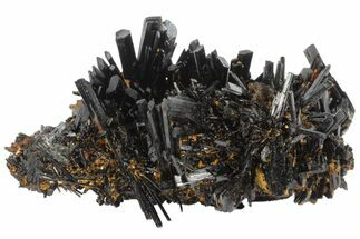 Buy Phenomenal, 2.4 Black Tourmaline (Schorl) Crystal Cluster - Namibia - #100375