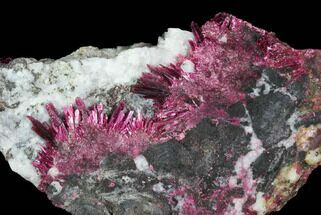 Erythrite - Fossils For Sale - #93594
