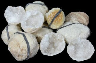 "Wholesale Lot: 1.25"" to 2.5"" Sparkling Quartz Geodes - 130 Geodes For Sale, #101633"
