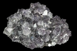 "2"" Amethyst ""Flower"" Crystal Cluster - Uruguay For Sale, #102239"