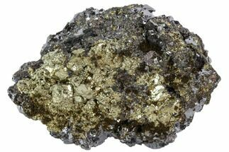 Galena & Pyrite - Fossils For Sale - #102552