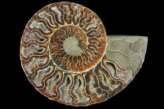 "4.7"" Agatized Ammonite Fossil (Half) - Crystal Chambers For Sale, #103091"