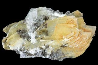 Barite - Fossils For Sale - #103374