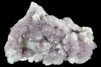 "Buy 3"" Purple Fluorite on Quartz Epimorphs - Arizona - #103564"