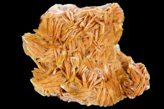 Barite - Fossils For Sale - #103728