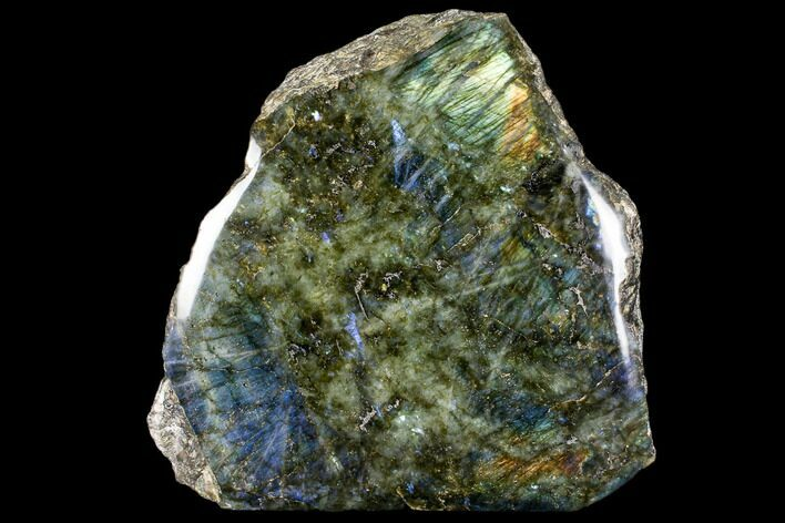 "12.1"" Wide, Polished Labradorite Section (37 lbs) - Madagascar"