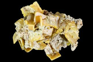 Wulfenite - Fossils For Sale - #105552