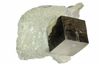 ".71"" Pyrite Cube In Matrix - Navajun, Spain For Sale, #105392"