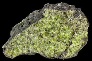 "3.7"" Peridot in Basalt - Arizona For Sale, #106571"