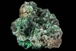 Fluorite  - Fossils For Sale - #106098