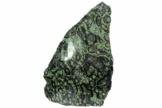 "9.4"" Single Side Polished Kambaba Jasper Freeform - Madagascar For Sale, #106730"