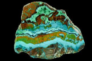 "2.2"" Polished Chrysocolla & Plume Malachite - Bagdad Mine, Arizona For Sale, #107402"