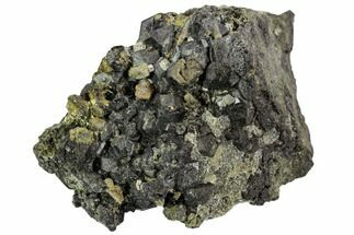 Garnet var. Andradite var. Melanite - Fossils For Sale - #107904