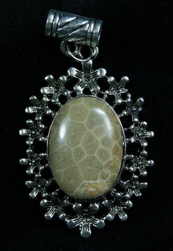 Fossil Coral Pendant - 20 Million Years Old