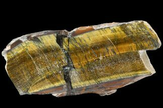 Tiger's eye - Fossils For Sale - #109290