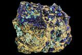 "2.2"" Botryoidal Rosasite and Azurite Crystals - Hidden Treasure Mine - #109843-1"