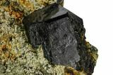 "3"" Black Dravite Crystals on Rock - New York - #110359-2"