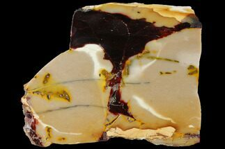 "4.8"" Polished Mookaite Jasper Slab - Australia For Sale, #110270"