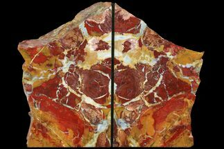 "7.8"" Red/Yellow Jasper Replaced Petrified Wood Bookends - Oregon For Sale, #111095"