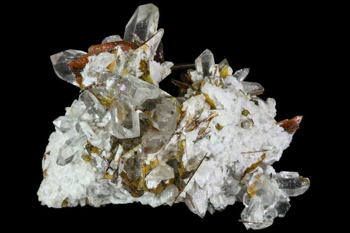 "1.5"" Brookite and Quartz Crystal Association- Pakistan"