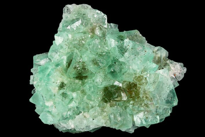 "2"" Green Fluorite Crystal Cluster - South Africa"