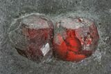 "4.2"" Red Embers Garnets in Graphite - Massachusetts - #111893-2"