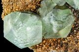 "4.9"" Green Fluorite Crystals on Quartz - China - #112190-3"
