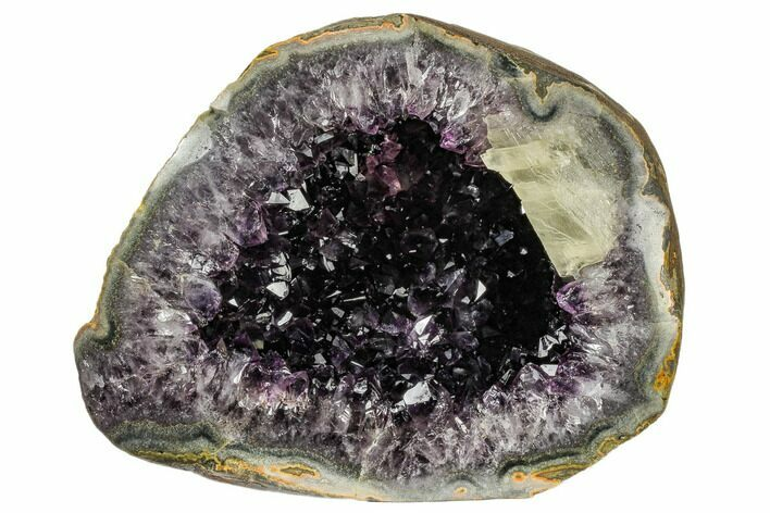 "11.9"" Top Quality Amethyst Geode with Calcite - Uruguay"