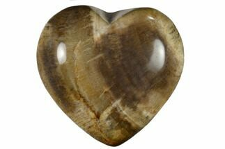 "Buy 1.6"" Polished, Triassic Petrified Wood Heart - Madagascar - #115510"