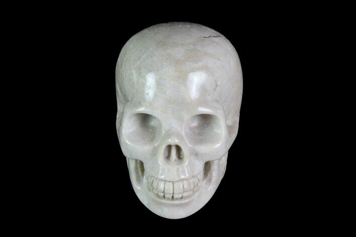 "1.9"" Realistic, Polished Fossil Coral Skull"