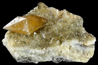 "Buy 7.6"" Golden Calcite Crystal On Dogtooth Calcite - Morocco - #115198"