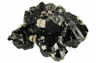 Tourmaline var. Schorl & Orthoclase - Fossils For Sale - #117510