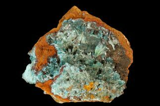 "Buy 1.4"" Rosasite, Calcite & Aurichalcite Crystal Association - Mexico - #119212"