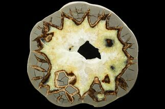 "Buy 6.9"" Polished Septarian Slab With Crystals - Utah - #119707"