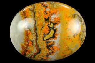 "1.9"" Polished Bumblebee Jasper Stone - Indonesia For Sale, #114680"