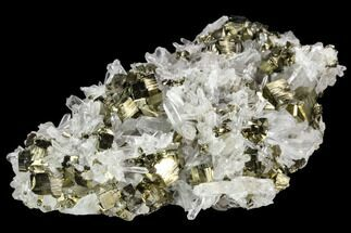 "4.1"" Gleaming Cubic Pyrite & Quartz Crystal Association - Peru For Sale, #124445"
