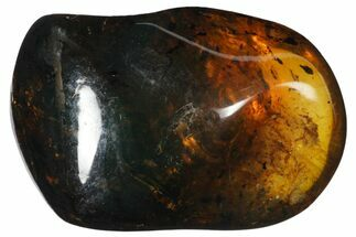 "Buy 1.6""  Polished Chiapas Amber (12 grams) - Mexico - #114886"