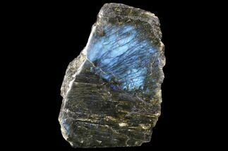 "6.2"" Tall, Single Side Polished Labradorite - Madagascar For Sale, #126458"