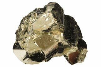 Pyrite  - Fossils For Sale - #126594