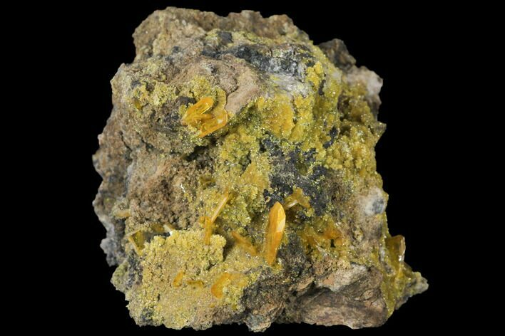 "2.4"" Wulfenite and Mimetite Association - Mexico"