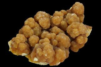 Aragonite  - Fossils For Sale - #128034