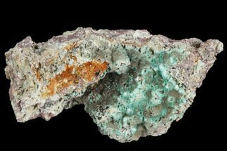 Aurichalcite & Calcite - Fossils For Sale - #127242