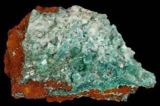 "Buy 2.1"" Calcite Encrusted Fibrous Aurichalcite Crystals - Mexico - #127243"