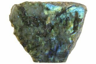 "5.7"" Wide, Single Side Polished Labradorite - Madagascar For Sale, #126455"