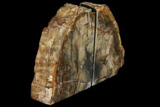 "6.1"" Tall, Colorful Petrified Wood Bookends - Madagascar For Sale, #129854"